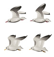 Flying seagulls vector