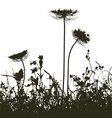 Meadow weeds silhouettes plants vector