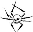 Spider skull vector