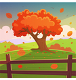 The autumn tree vector