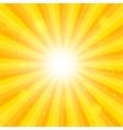 Orange sun hypnotic background vector
