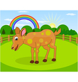 Cartoon deer and rural meadow vector