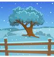 Winter tree vector