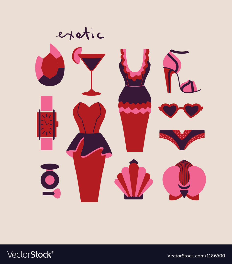 Woman clothes and accessories vector | Price: 1 Credit (USD $1)