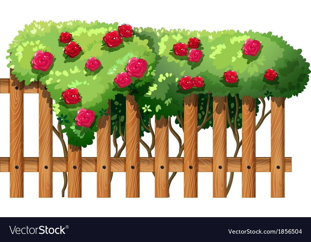 A flowering plant with a fence vector | Price: 1 Credit (USD $1)
