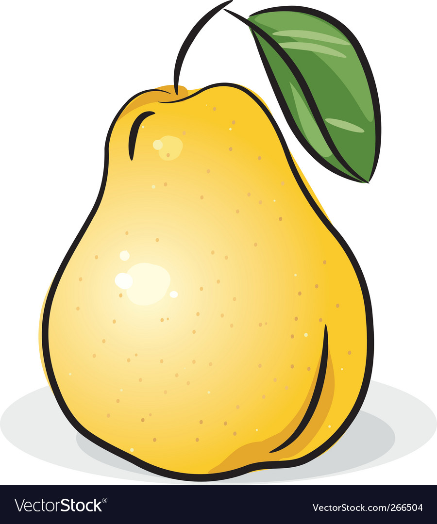 Yellow pear vector | Price: 1 Credit (USD $1)