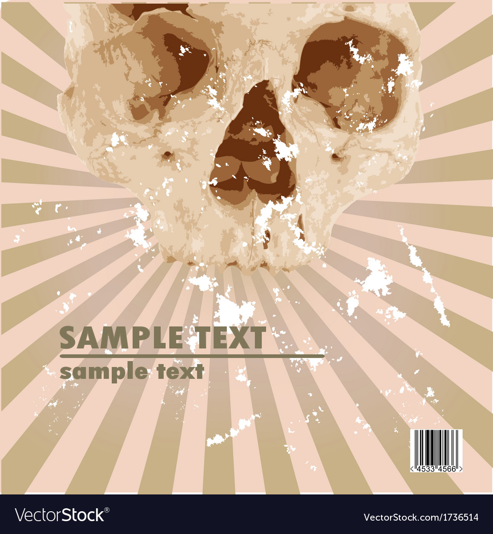 Grungy scull vector | Price: 1 Credit (USD $1)