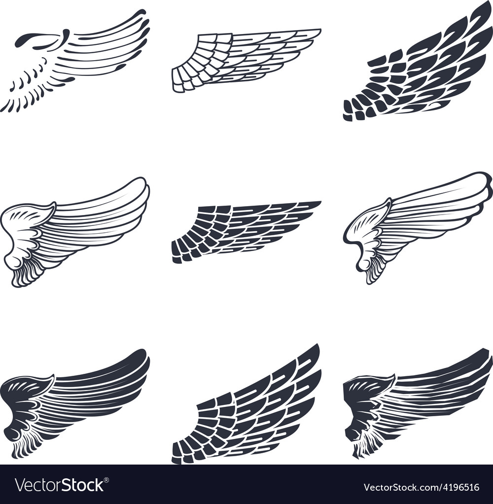 Set of wings isolated on white vector | Price: 1 Credit (USD $1)