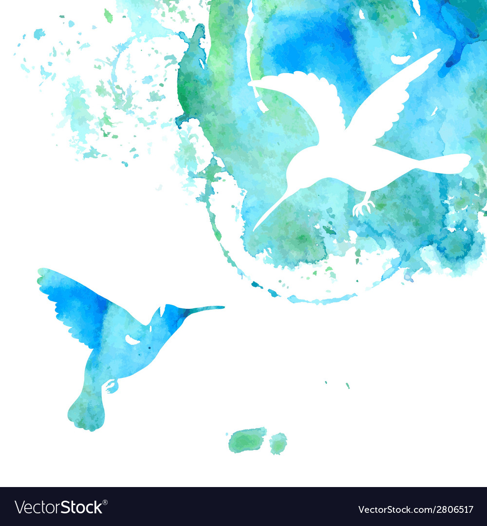 Animal background with hummingbirds vector