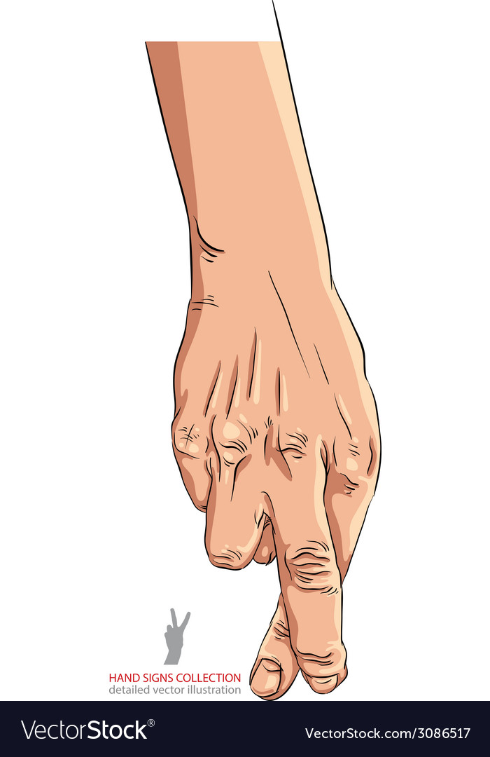 Cheater hand with crossed fingers detailed vector   Price: 1 Credit (USD $1)