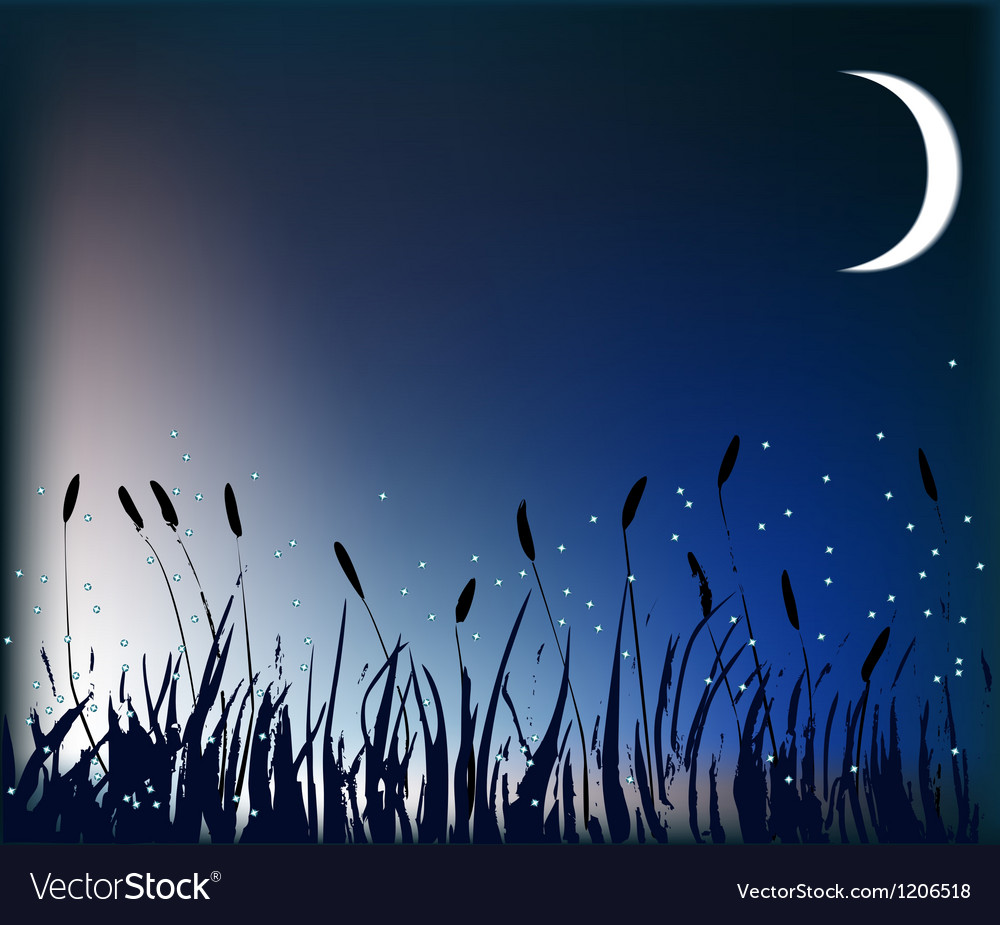 Meadow at night vector | Price: 1 Credit (USD $1)