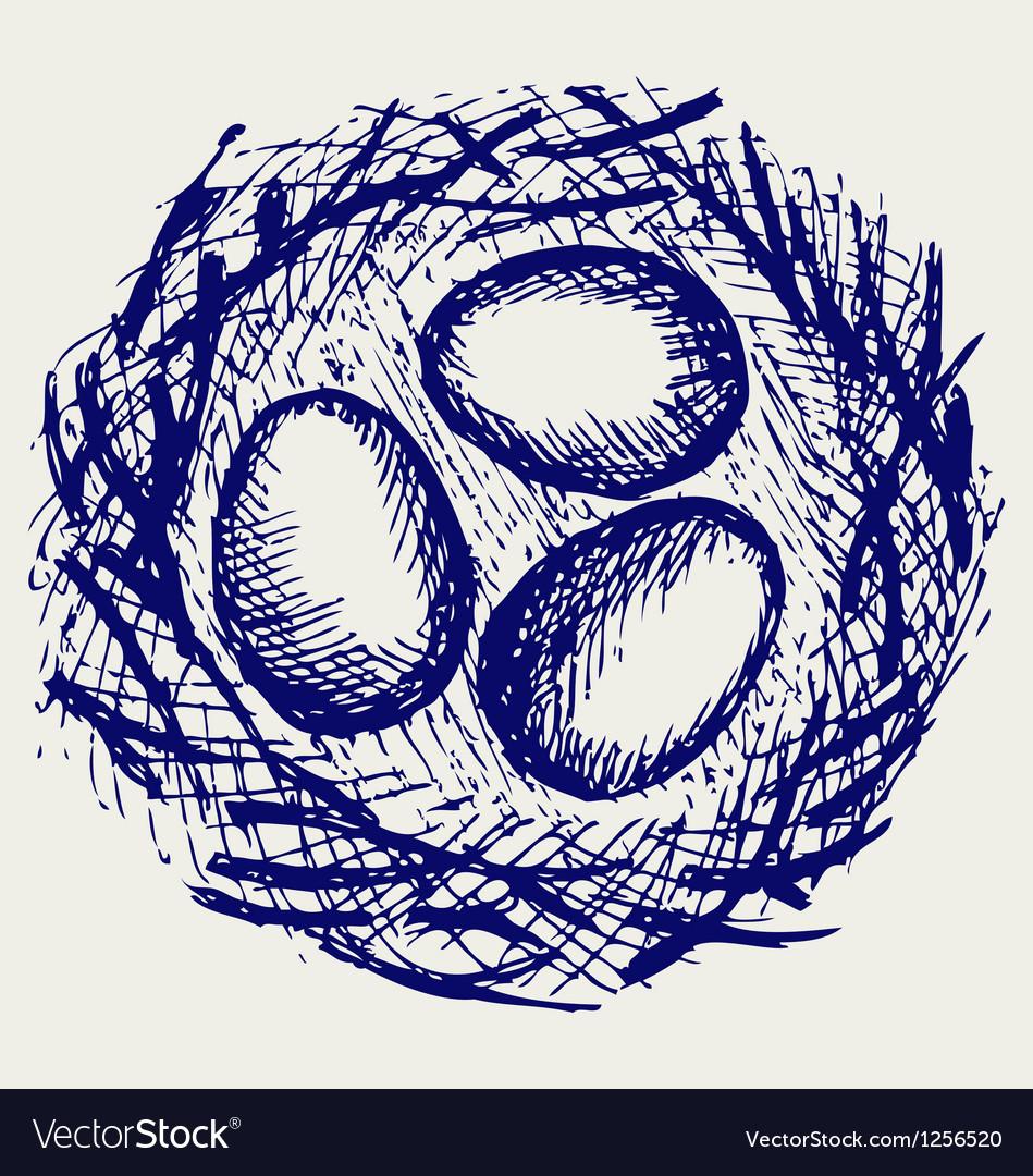 Eggs in nest vector | Price: 1 Credit (USD $1)