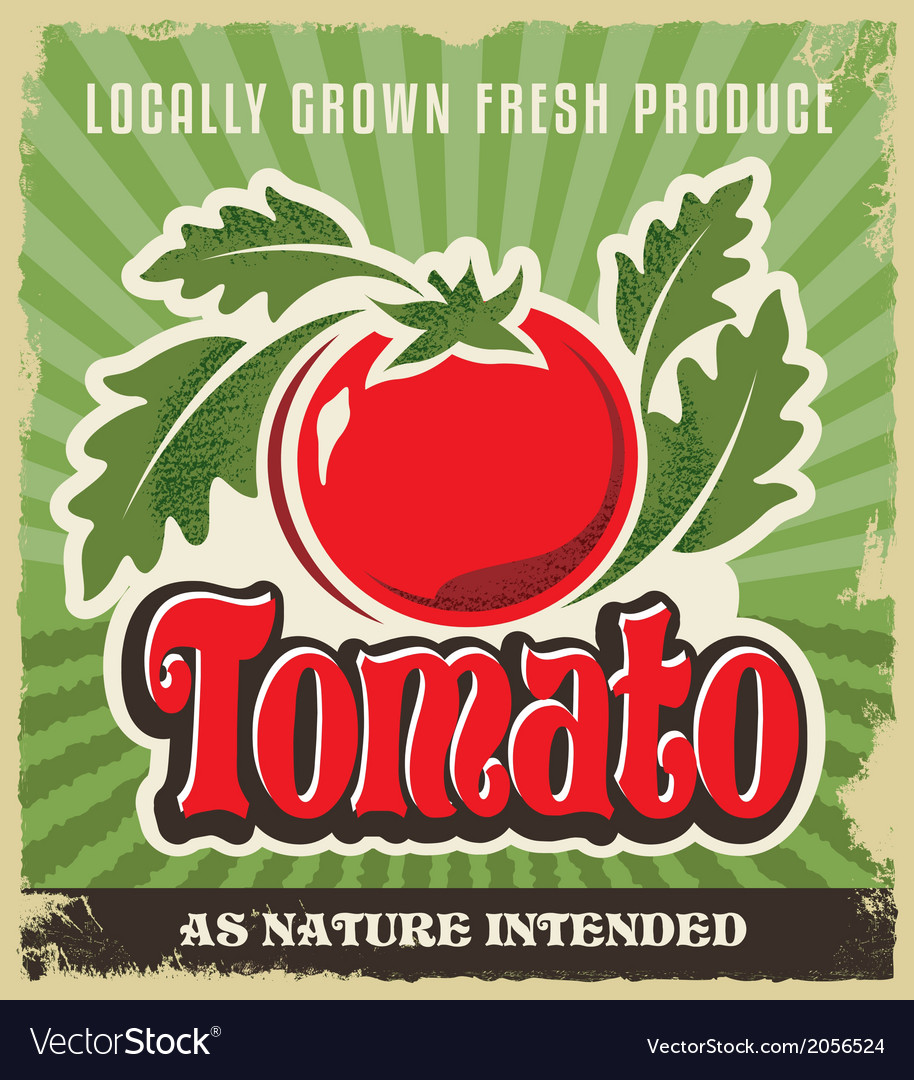 Retro tomato vintage advertising label sign vector | Price: 3 Credit (USD $3)