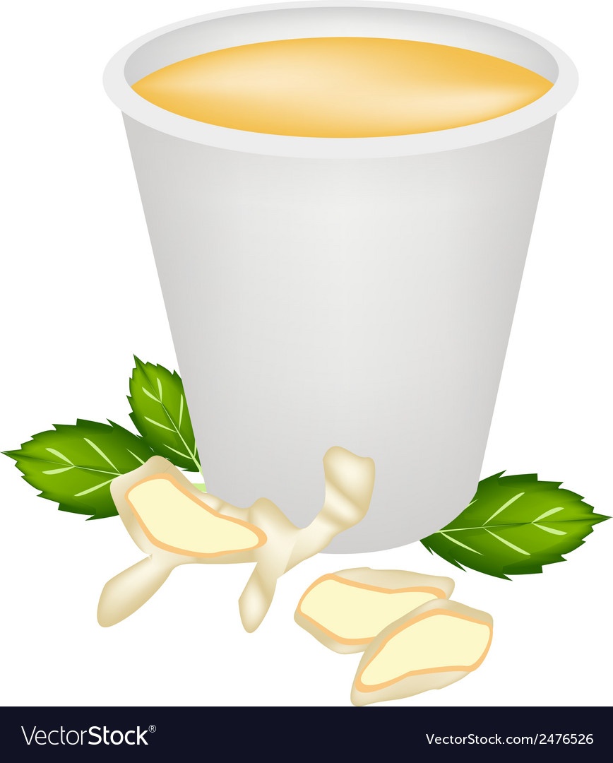 Ginger tea with honey in disposable cup vector | Price: 1 Credit (USD $1)