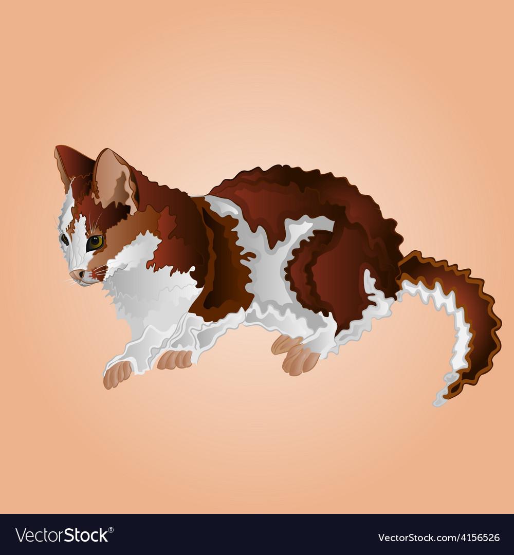 Tabby kitten sitting cute feline vector | Price: 1 Credit (USD $1)