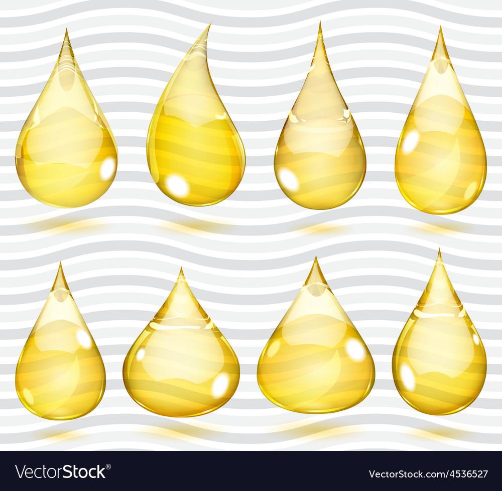 Transparent yellow drops vector | Price: 1 Credit (USD $1)