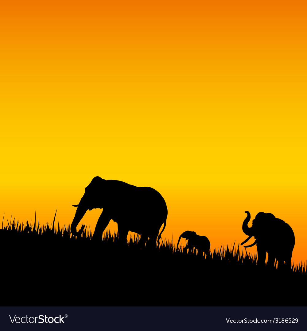Elephant silhouette walking vector | Price: 1 Credit (USD $1)