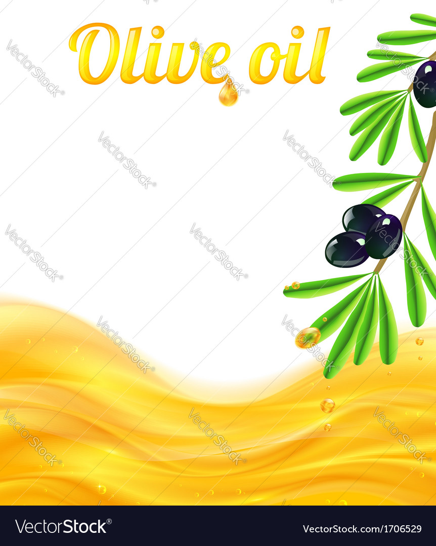Olive oil and branches with olives background vector | Price: 1 Credit (USD $1)