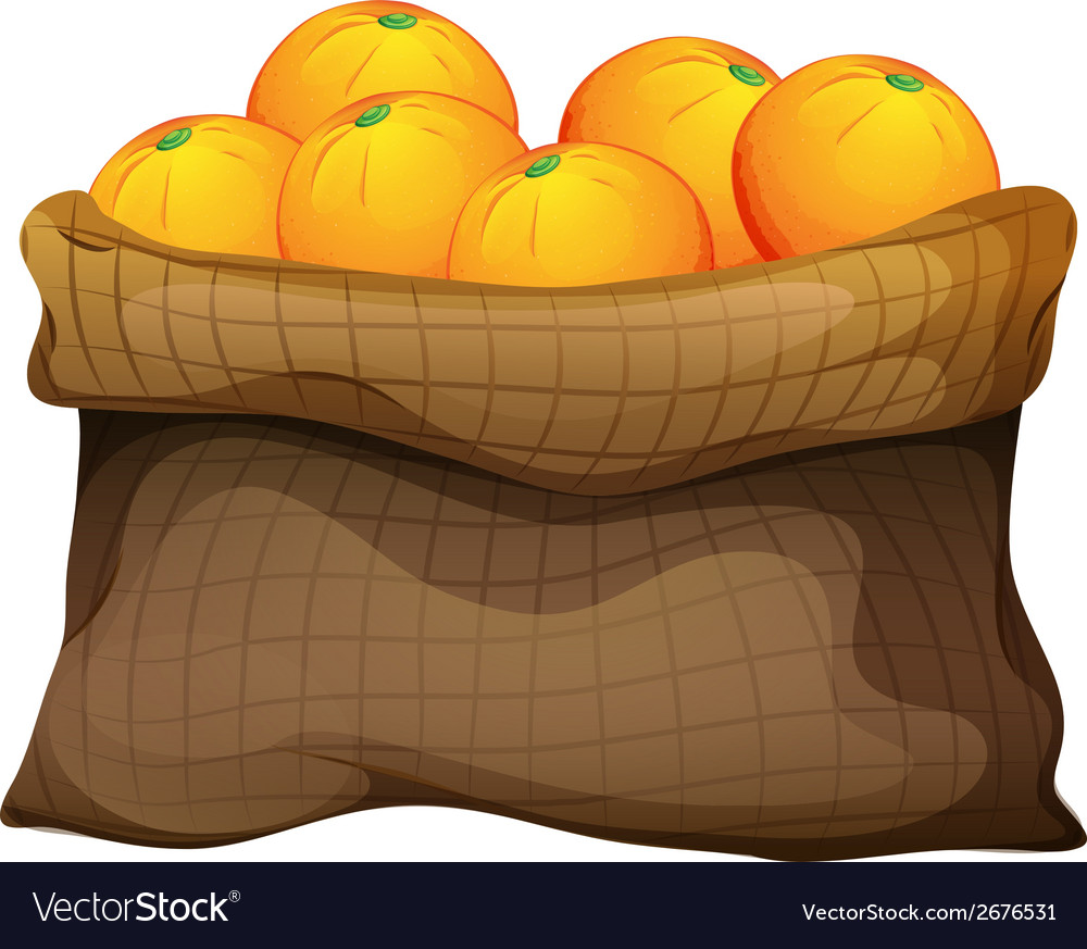 A sack of oranges vector | Price: 1 Credit (USD $1)