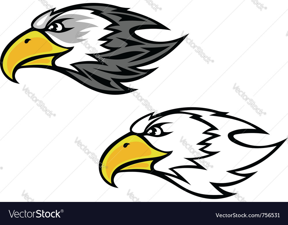 Cartoon falcon or hawk head vector | Price: 1 Credit (USD $1)
