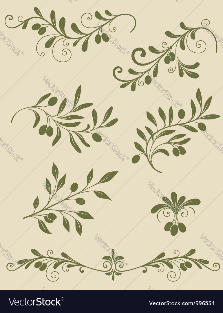 Olive decorative vector | Price: 1 Credit (USD $1)