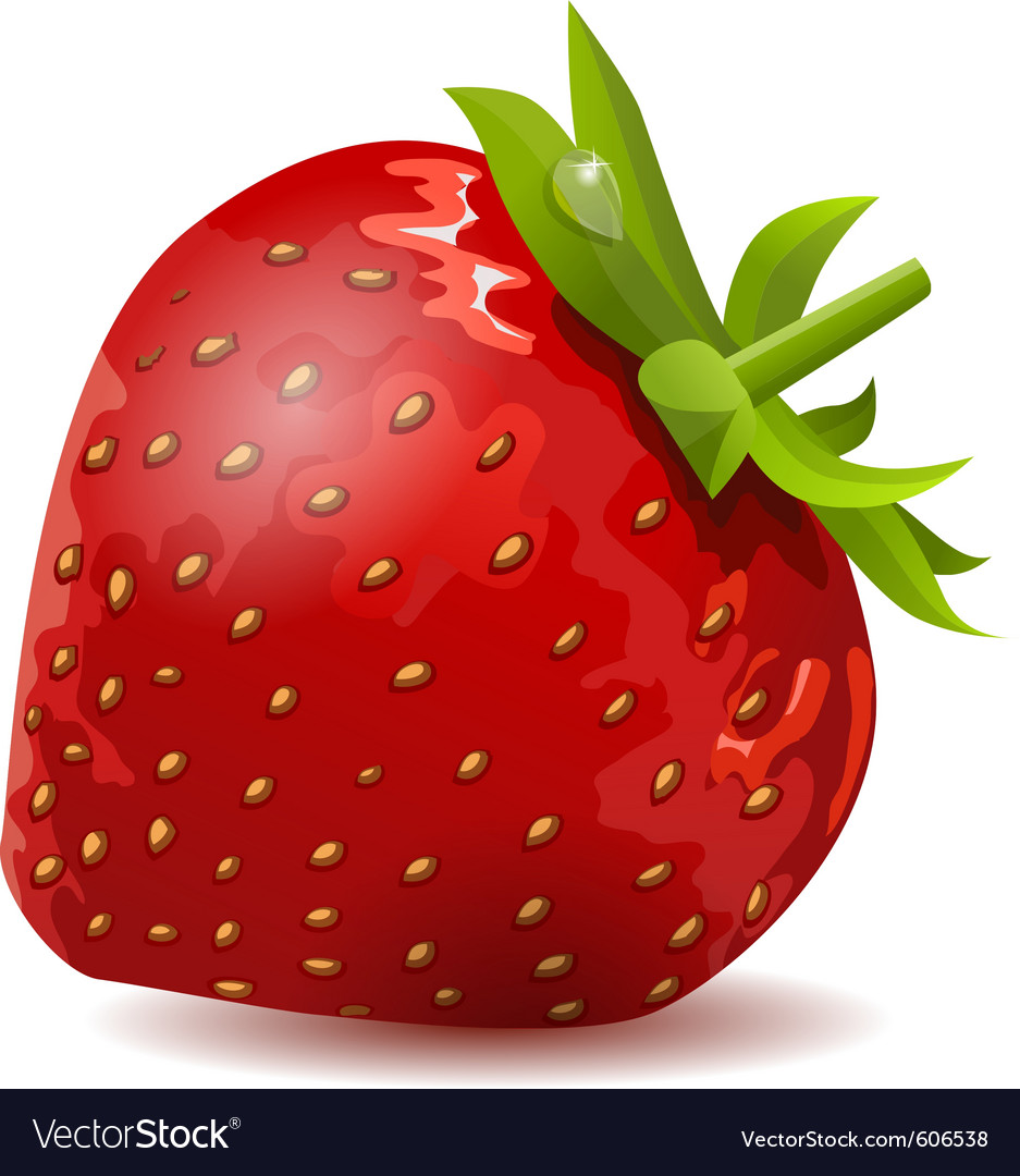 Ripe strawberry isolated vector | Price: 1 Credit (USD $1)