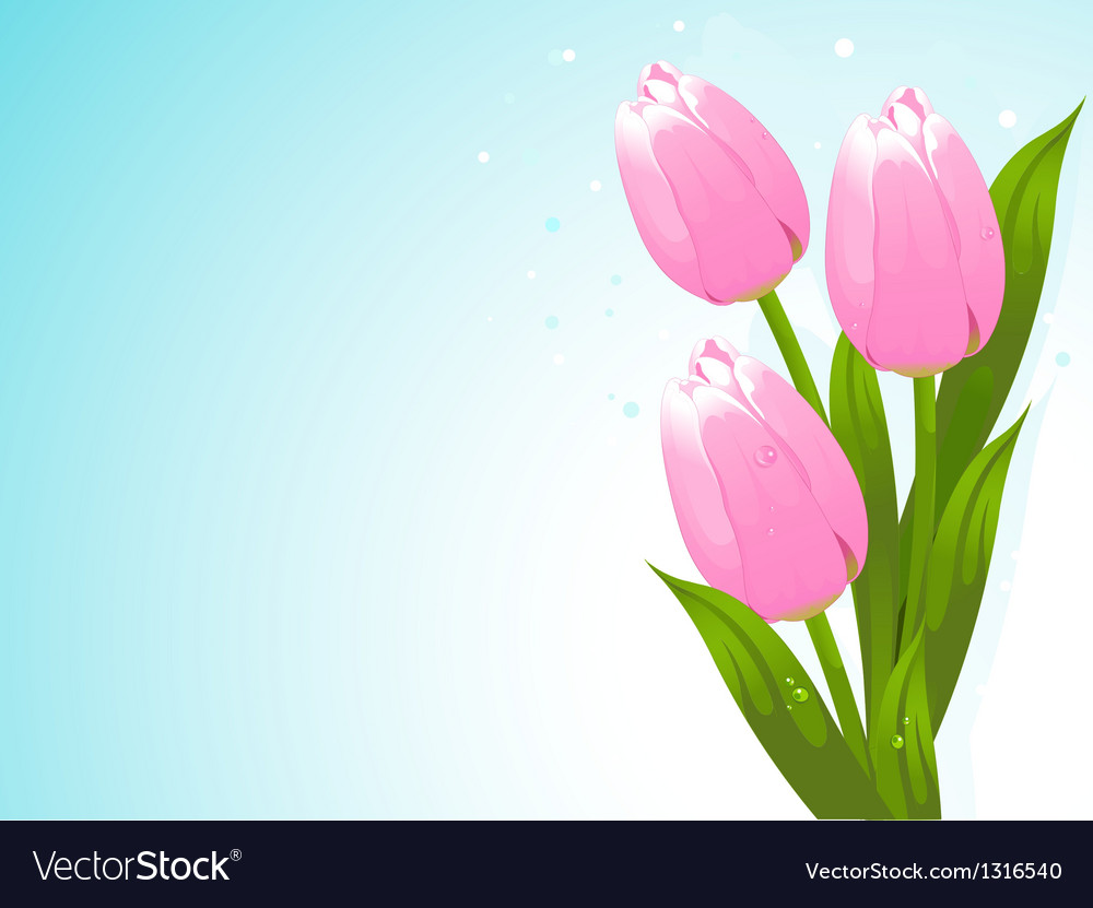 Bunch of tulips vector | Price: 3 Credit (USD $3)
