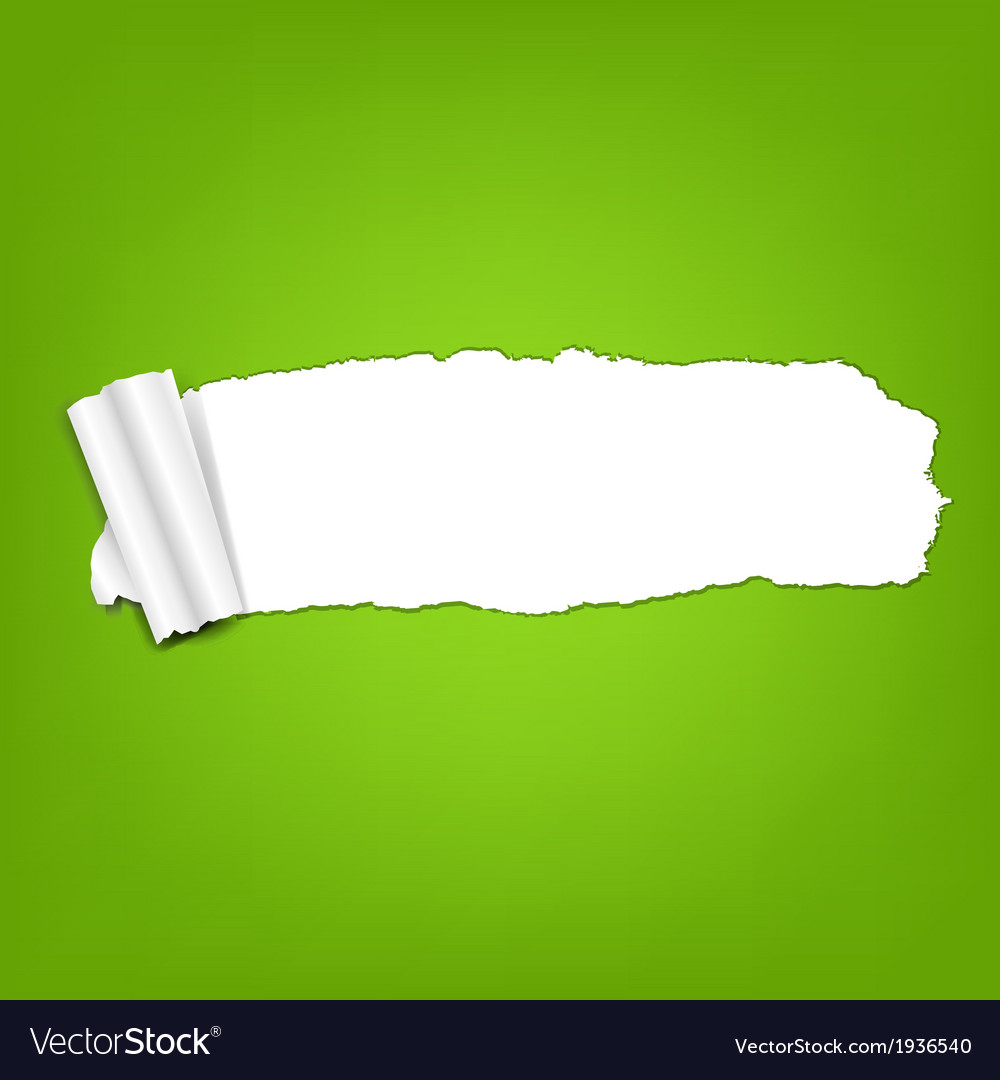 Ripped green paper torn vector   Price: 1 Credit (USD $1)