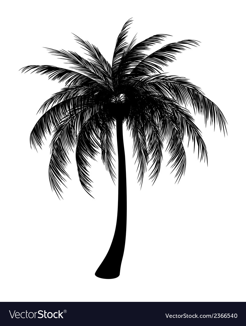 Silhouette of palm vector | Price: 1 Credit (USD $1)