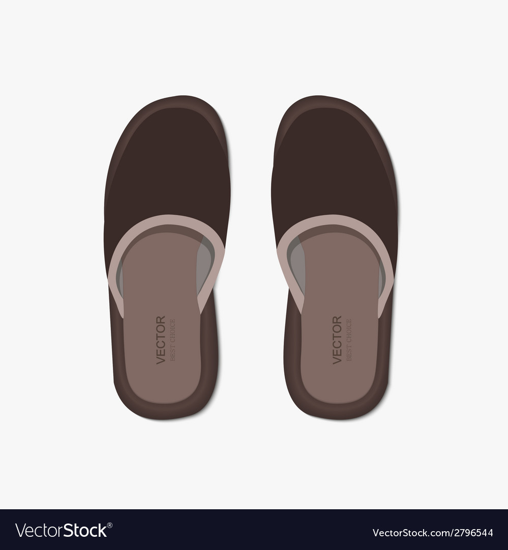 Modern flippers on gray bakground vector | Price: 1 Credit (USD $1)