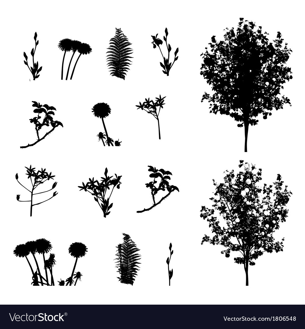 Set of plant tree foliage elements silhouette vector | Price: 1 Credit (USD $1)