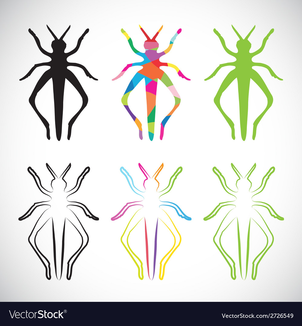 Grasshoppers vector | Price: 1 Credit (USD $1)