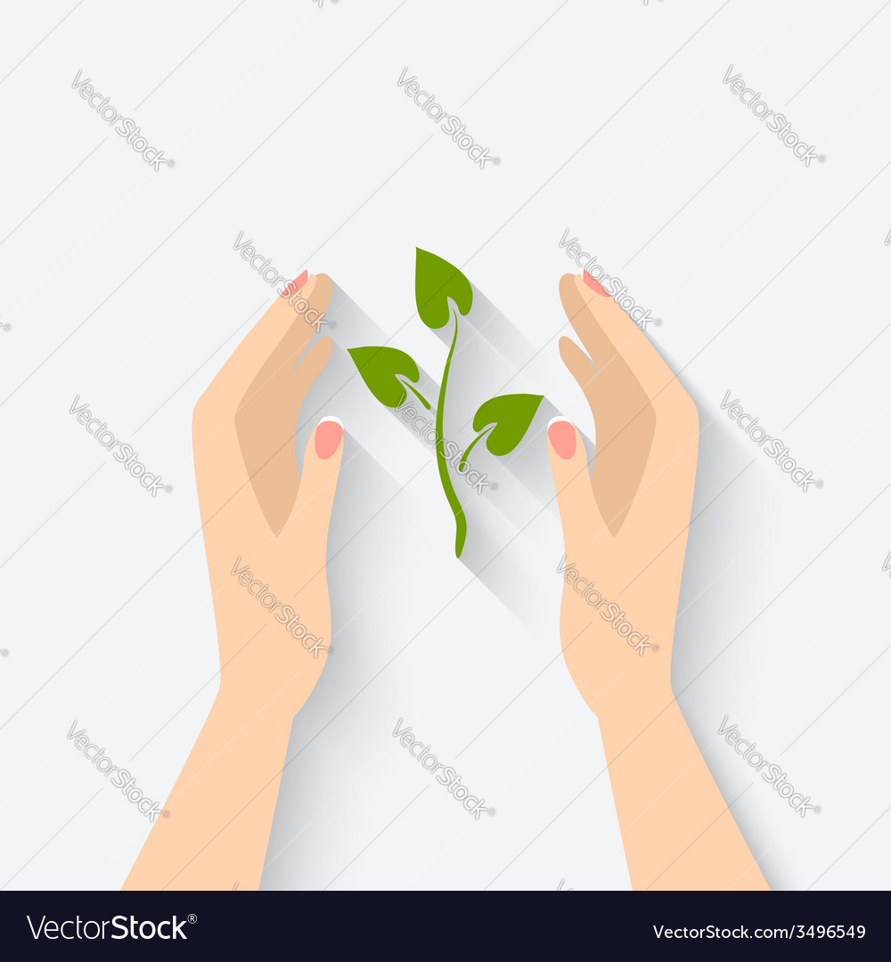 Green plant in hands symbol vector | Price: 1 Credit (USD $1)