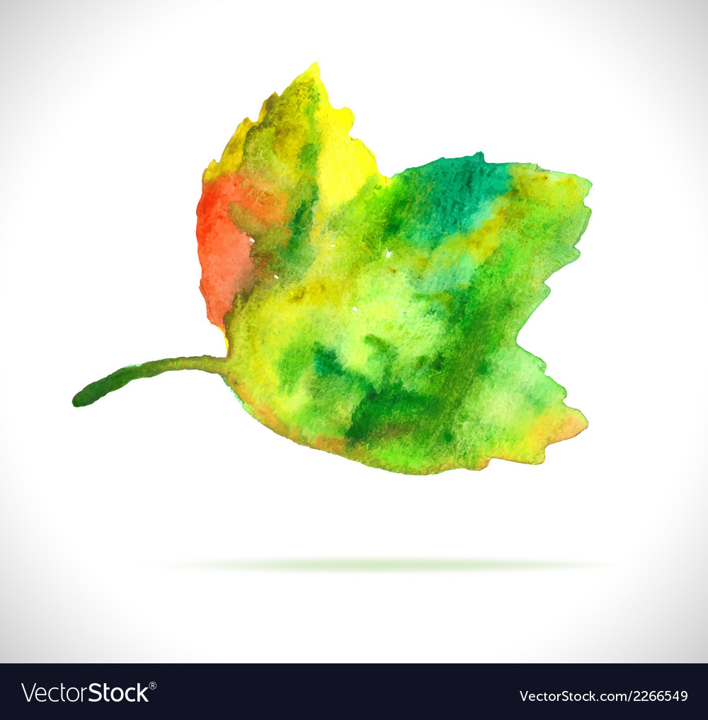 Watercolor color leaf design element vector | Price: 1 Credit (USD $1)
