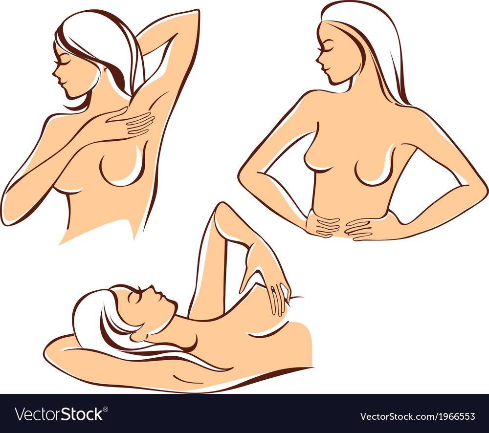 Breast self exam vector | Price: 1 Credit (USD $1)