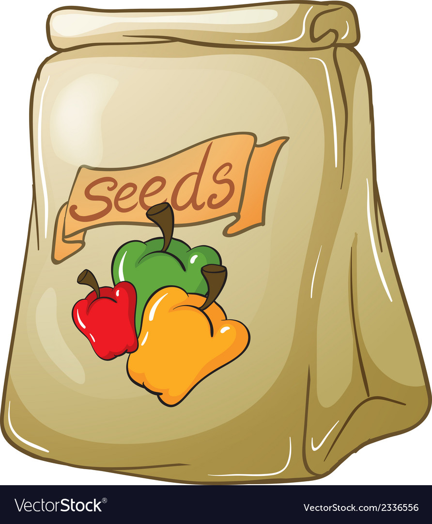 A pack of bell pepper seeds vector | Price: 1 Credit (USD $1)