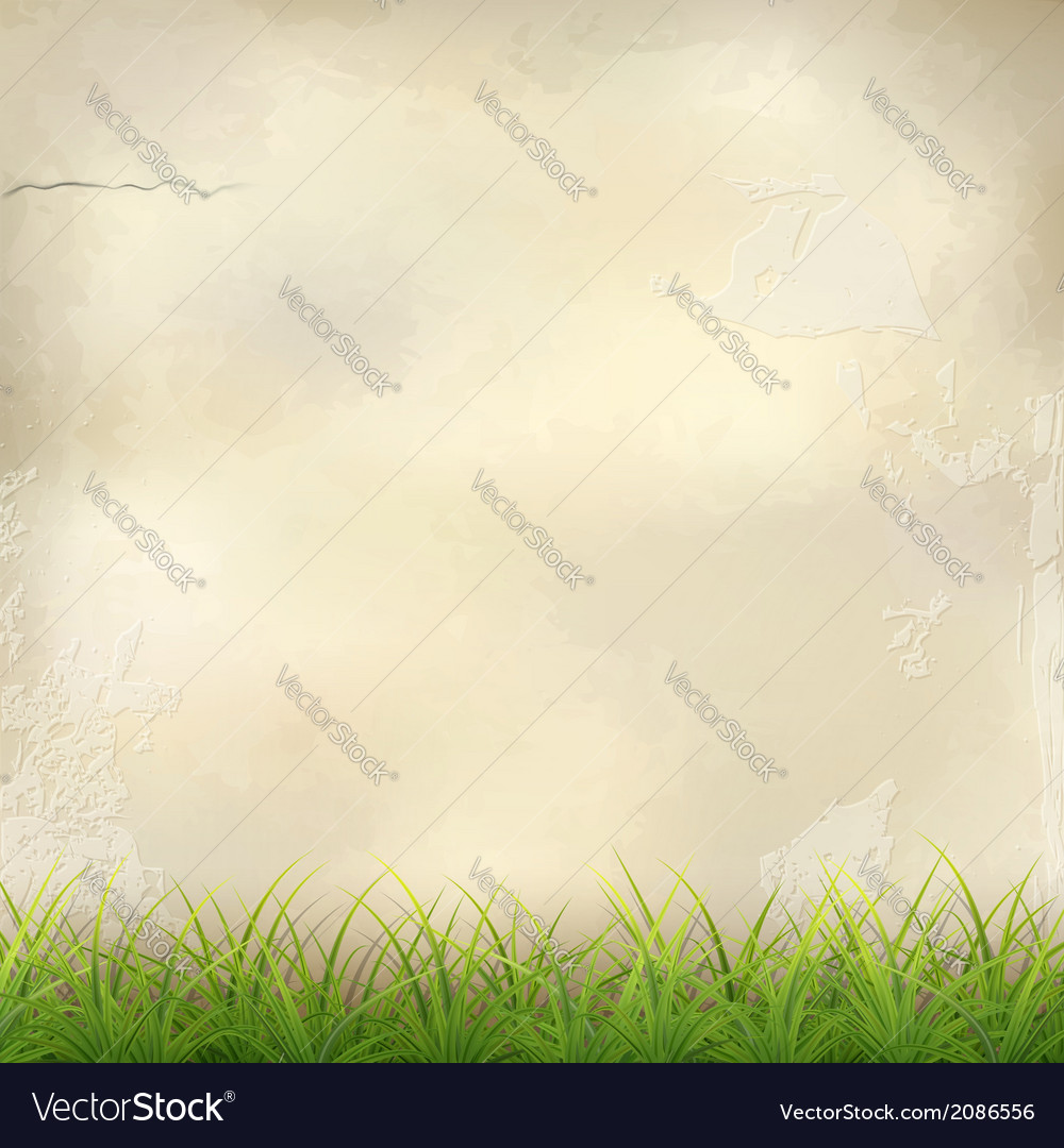 Green grass on plaster wall abstract background vector | Price: 1 Credit (USD $1)