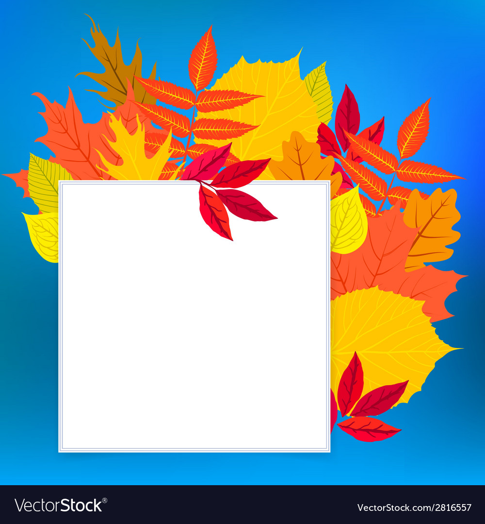 Card with autumn decor and leafs vector | Price: 1 Credit (USD $1)
