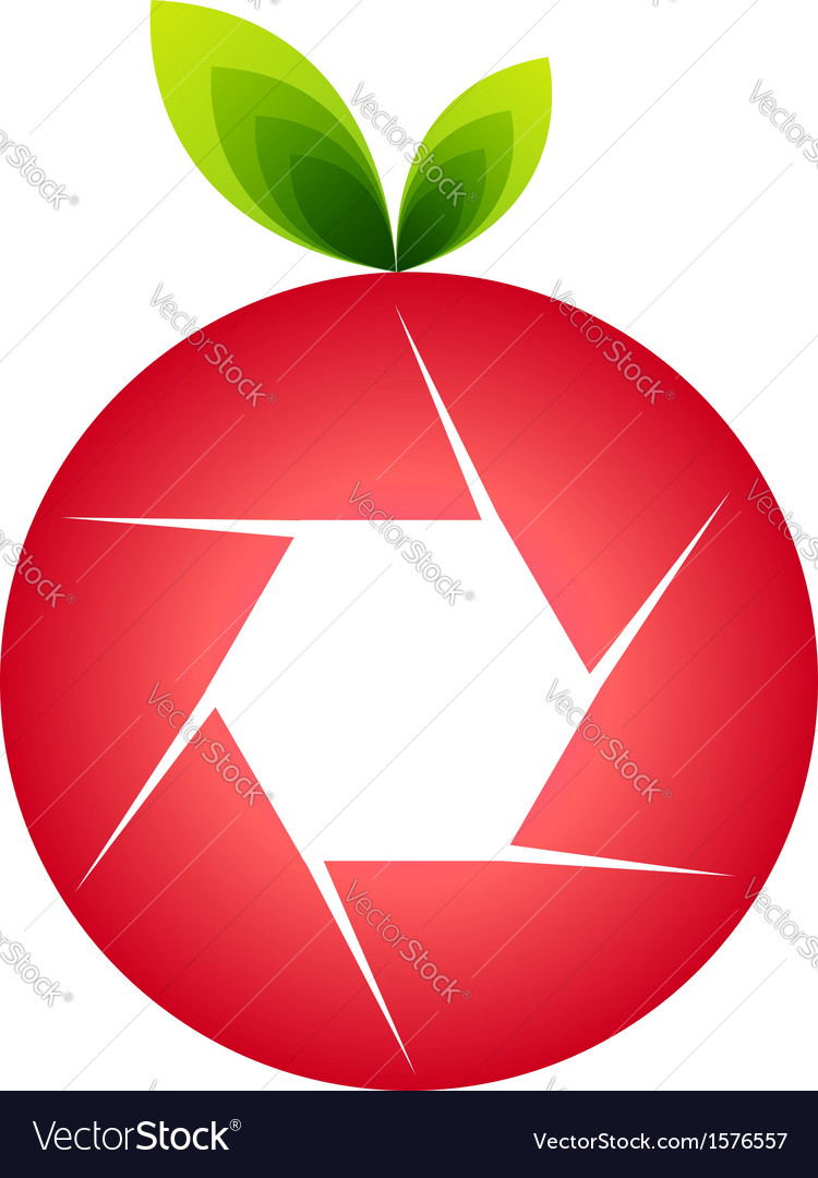 Orange photography logo vector   Price: 1 Credit (USD $1)