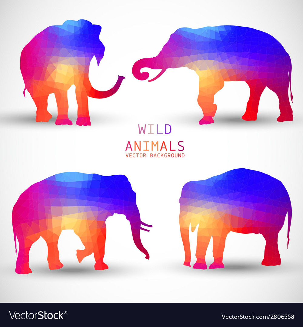 Set colorful geometric silhouettes of elephant vector | Price: 1 Credit (USD $1)