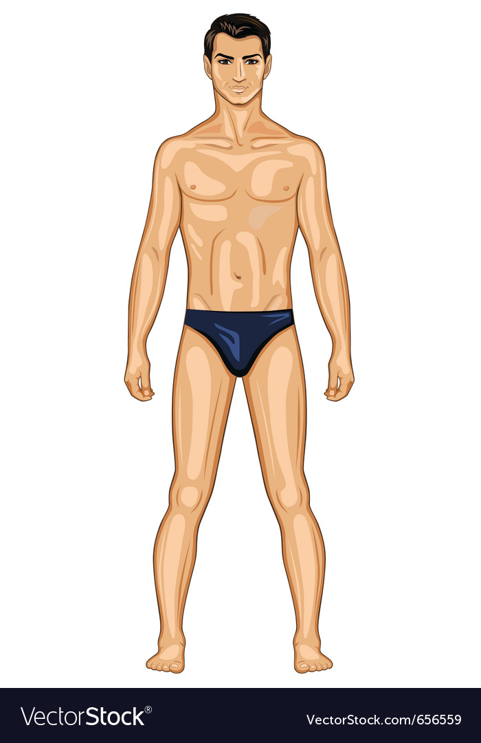 Naked standing man vector | Price: 1 Credit (USD $1)