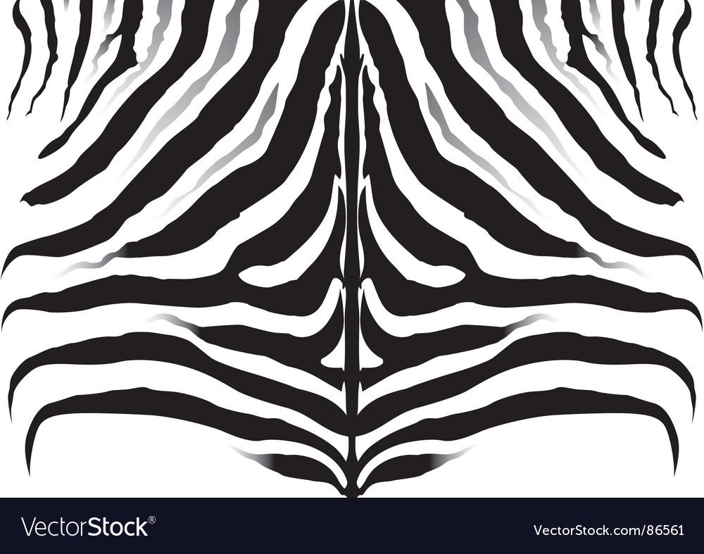Zebra pattern background texture vector | Price: 1 Credit (USD $1)