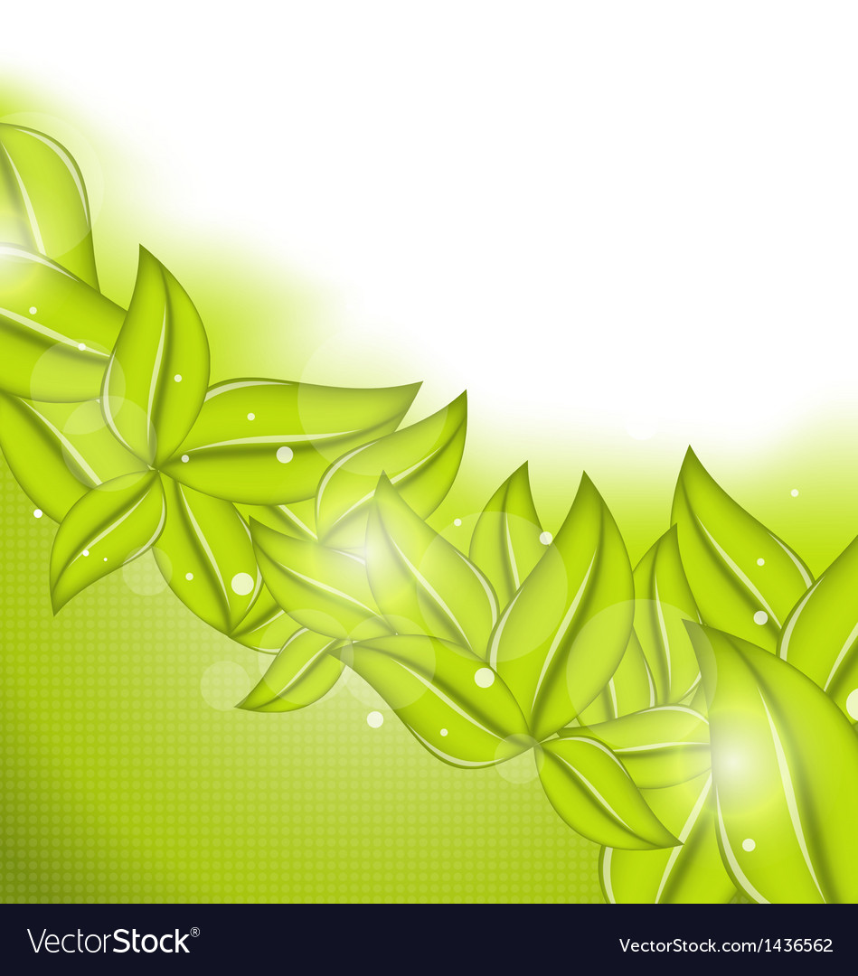 Ecology background with eco green leaves vector | Price: 1 Credit (USD $1)