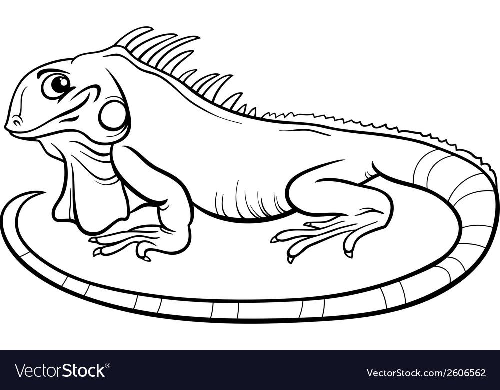 Iguana cartoon coloring book vector | Price: 1 Credit (USD $1)