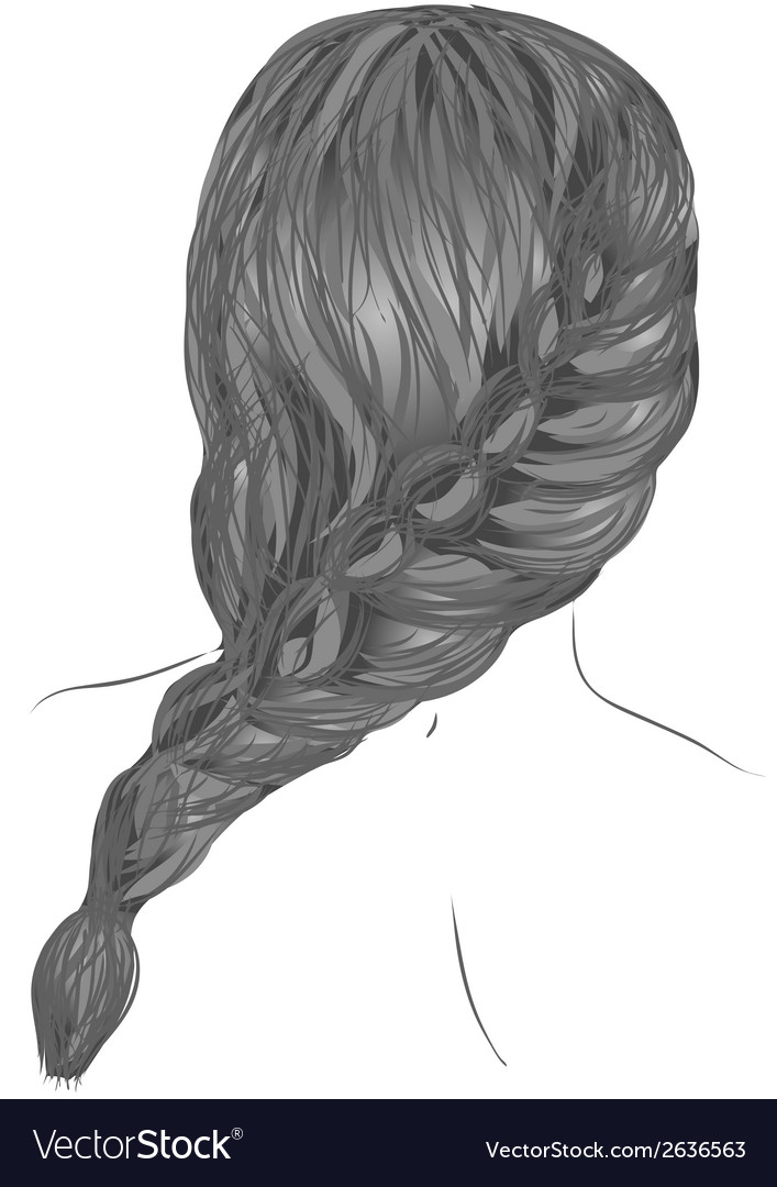 Plait hair vector | Price: 1 Credit (USD $1)