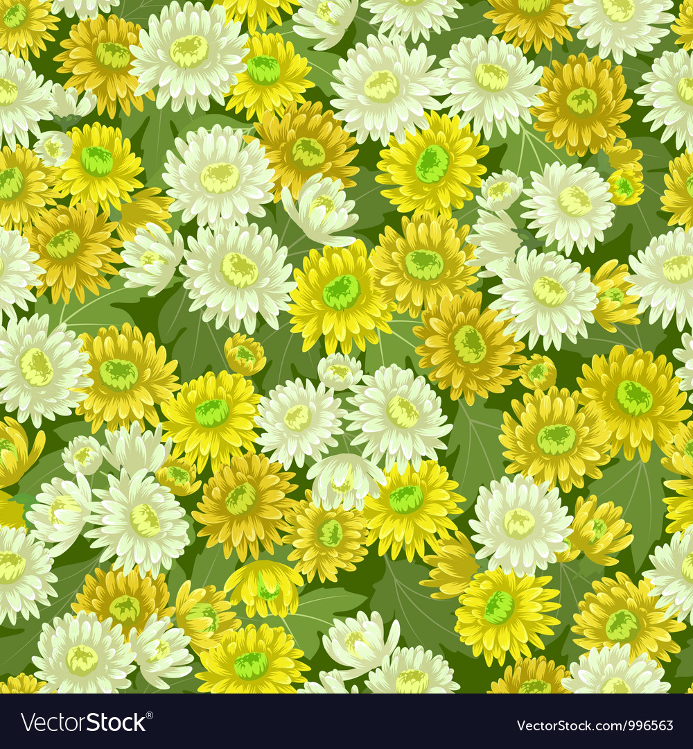 Seamless yellow white chrysanthemum backgrounds vector | Price: 1 Credit (USD $1)