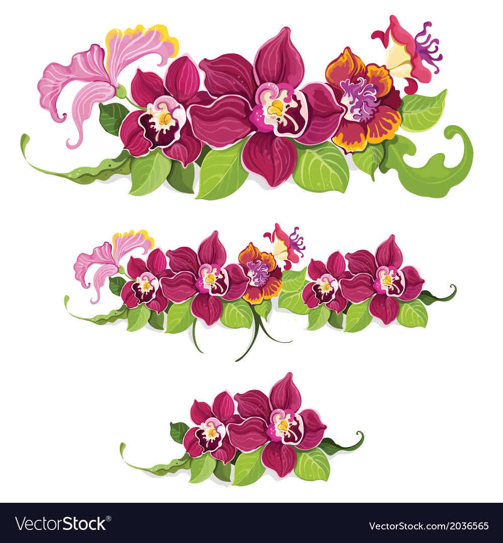 Tropical flower elements pattern vector   Price: 1 Credit (USD $1)