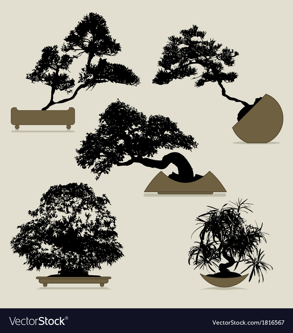 Bonsai trees collection vector | Price: 1 Credit (USD $1)