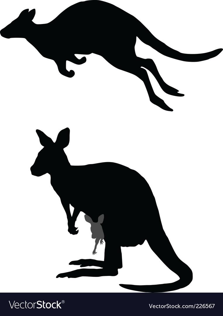 Kangaroo vector   Price: 1 Credit (USD $1)