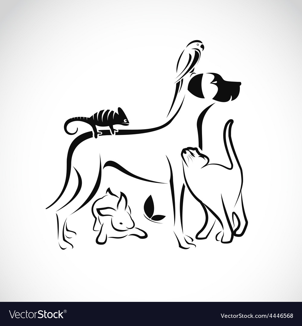 Group of pets vector | Price: 1 Credit (USD $1)
